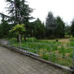 Neubau Eselhof Aline 1 alte Gärtnerei Stiftung Eselhilfe