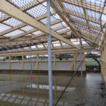 Neubau Eselhof Aline 71 Stiftung Eselhilfe