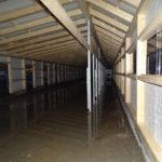 Neubau Eselhof Aline 79 Stiftung Eselhilfe