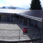 Neubau Eselhof Aline mit Solarzellen Stiftung Eselhilfe