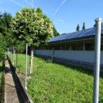 Neubau Eselhof Aline 124 Stiftung Eselhilfe