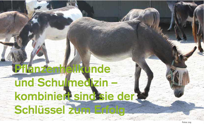 ProTier_Heft_3_18_Eselhilfe-Schweiz
