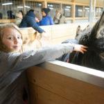 Enkelin Sophia mit Eslei im Stall des Eselhofs Aline