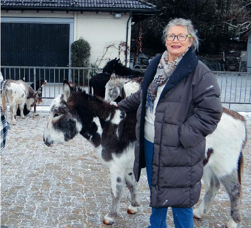 Bericht Maurmer Post Ursula Hofstetter Präsidentin Stiftung Eselhilfe