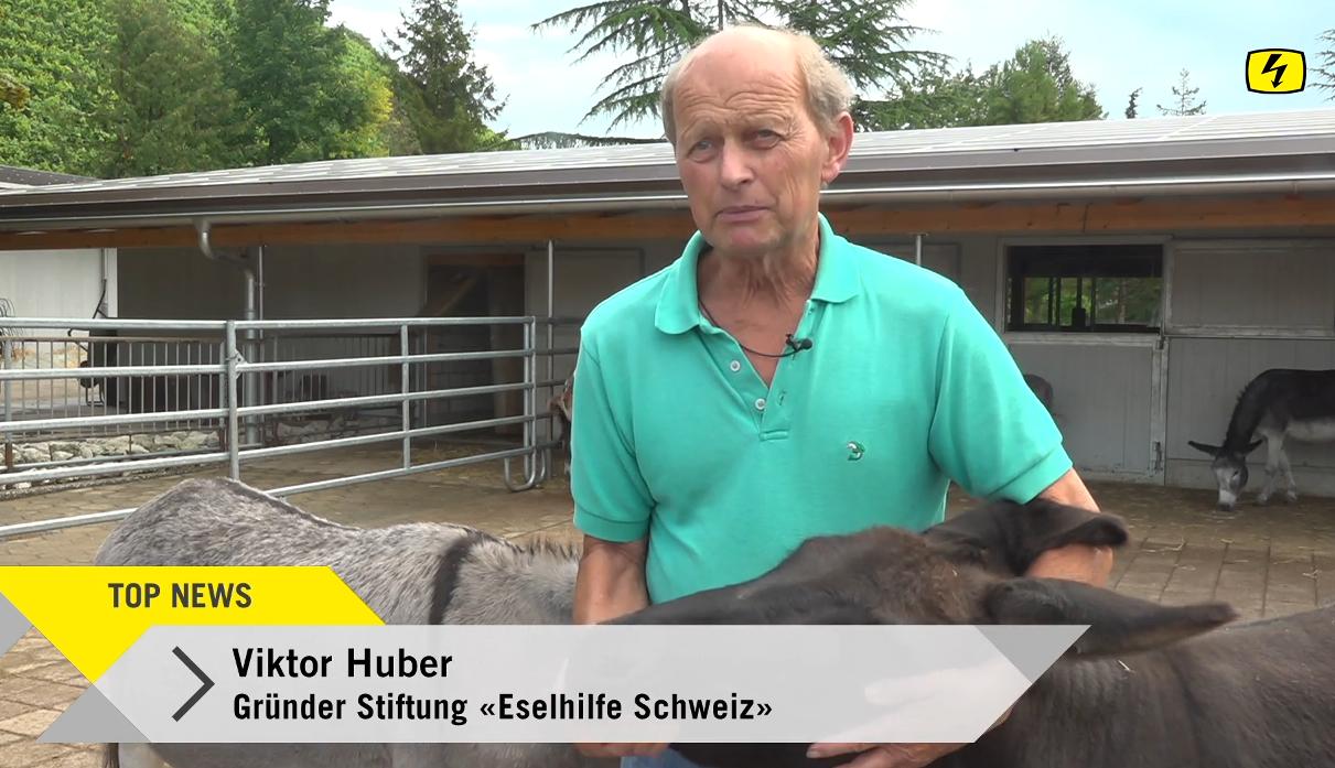 TeleTop: Stiftung Eselhilfe am Limit