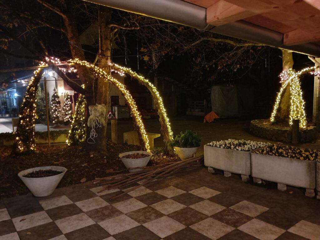 beleuchtete Bäume am Eseltag 22-Nov-21