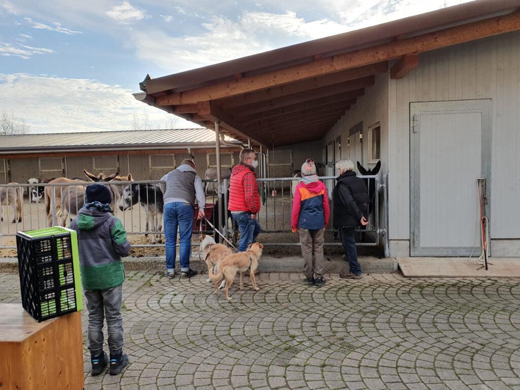 Besucher bei den Eseln am Eseltag 21_Nov-21
